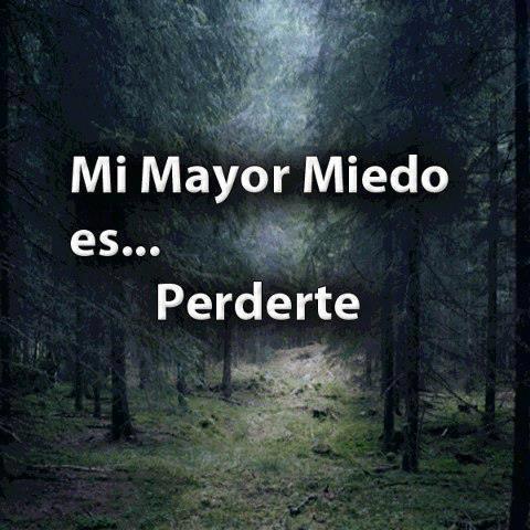 Mi Mayor Miedo Es... Perderte