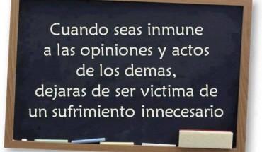 Cuando Seas Inmune A Las Opiniones...