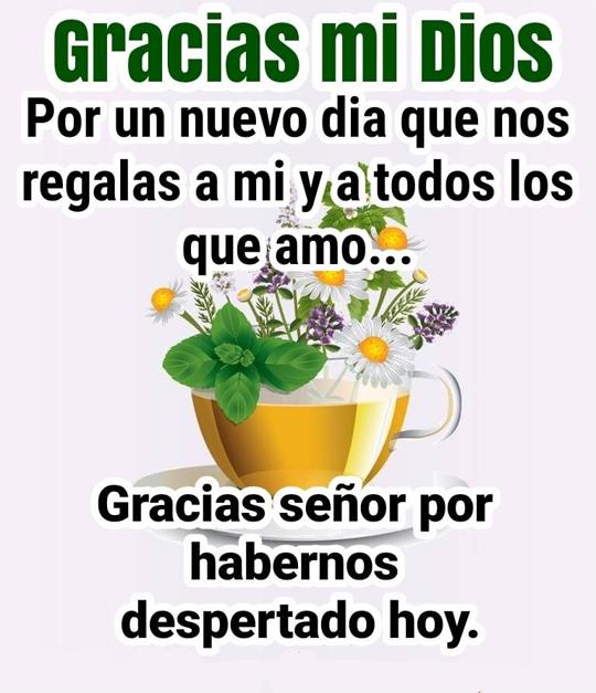 Gracias mi DIOS Por un nuevo dia que nos regalas a mi todos los que amo...