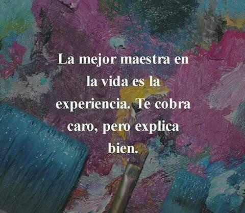 La mejor maestra en la vida es la experiencia. Te cobra caro, pero explica bien.