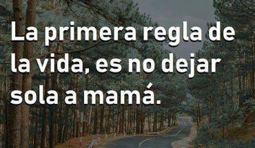 La primera regla de la vida, es no dejar sola a mamá