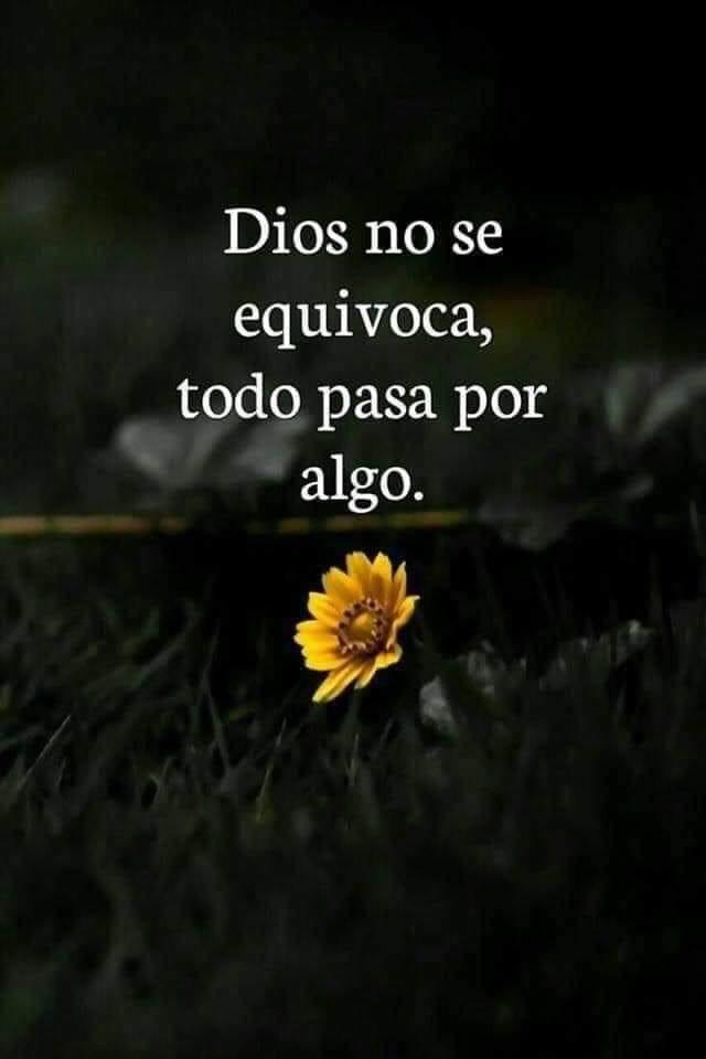 Dios no se equivoca, todo pasa por algo.