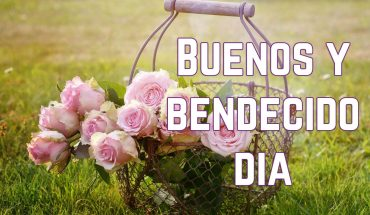 Imagen con la frase:Buenos y Bendecido Día.