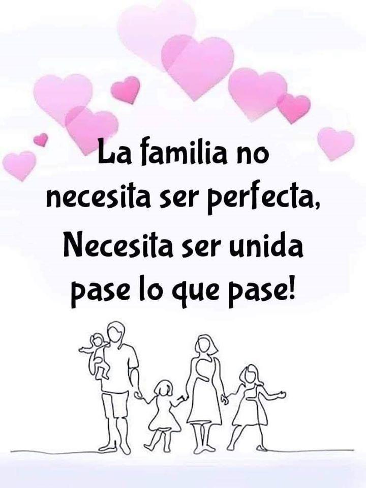 La familia no necesita ser perfecta, Necesita ser unida pase lo que pase!