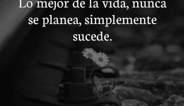 Lo mejor de la vida, nunca se planea, simplemente sucede.