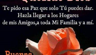Querido Dios Te pido esa Paz que solo Tú puedes dar. Hazla llegar a los Hogares de mis Amigos, a toda Mi Familia y a mí. Buenas Noches.