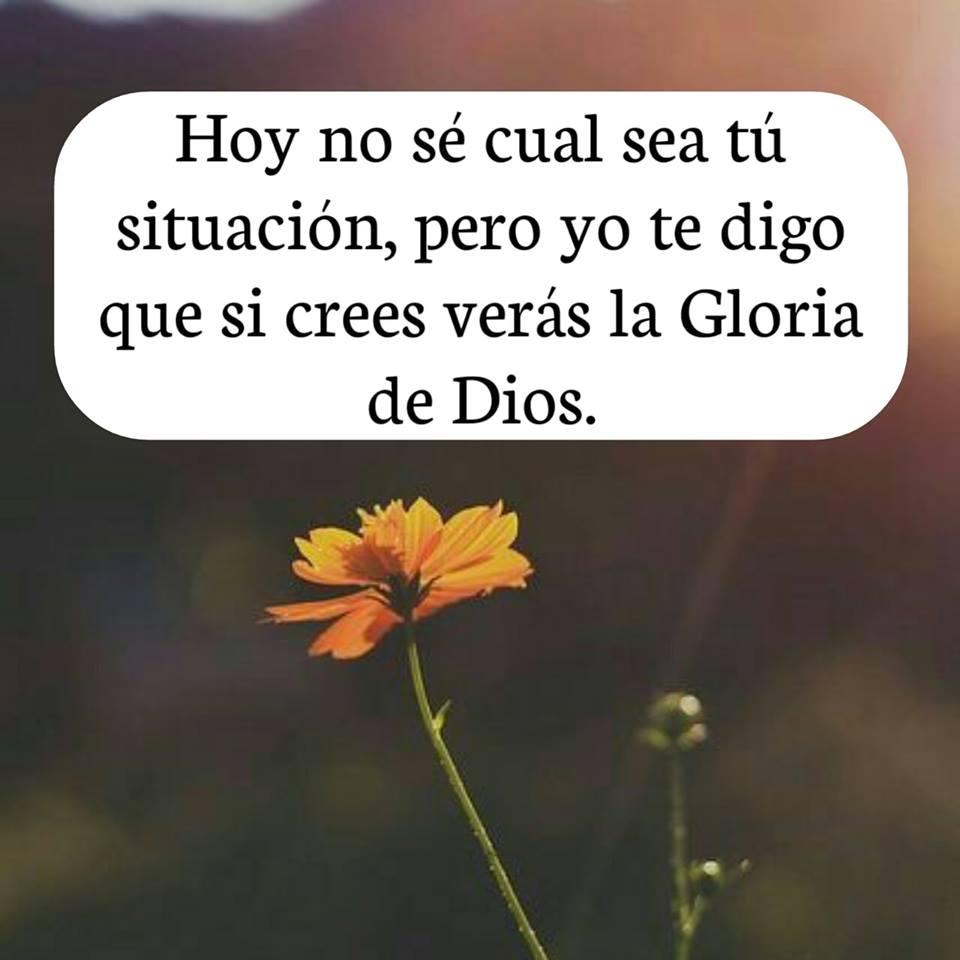 Hoy no sé cual sea tú situación, pero yo te digo que si crees verás la Gloria de Dios.
