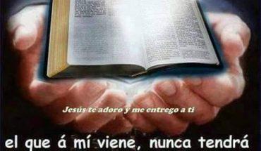 Yo soy el pan de vida: el que a Mí viene, nunca tendrá hambre; y el que en Mí cree, no tendrá sed jamás.