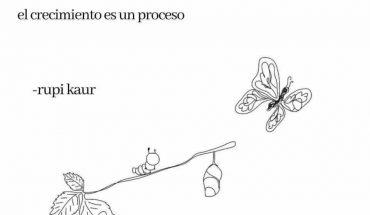 Una no solo se despierta un día y se convierte en mariposa