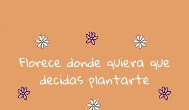 Florece donde quiera que decidas plantarte