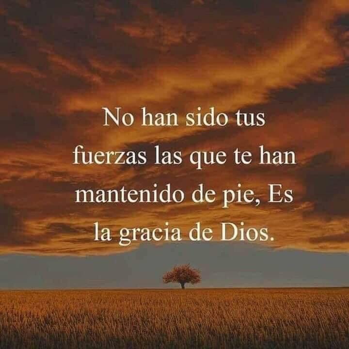 No han sido tus fuerzas las que te han mantenido de pie, es la gracia de Dios