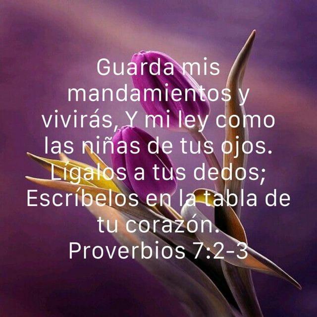 Proverbios 7:2-3 Guarda mis mandamientos y vivirás, y mi ley como las niñas de tus ojos