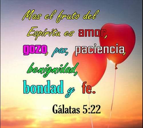 Gálatas 5:22 Más el fruto del espíritu es amor, gozo, paz, paciencia, benignidad, bondad y fe