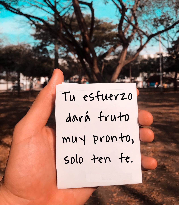 Tu esfuerzo dará fruto muy pronto, solo ten fe