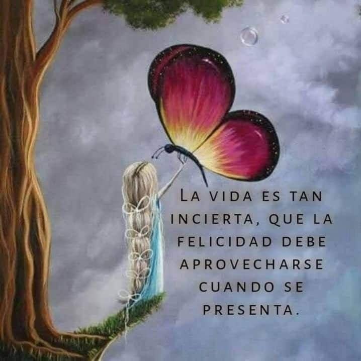 La vida Es tan incierta, que la felicidad debe aprovecharse cuando se presenta