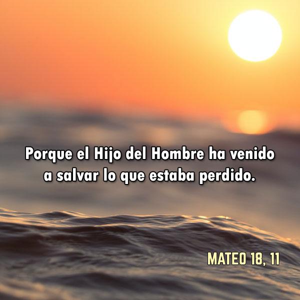Mateo 18, 11: Porque el Hijo del Hombre ha venido a salvar lo que estaba perdido