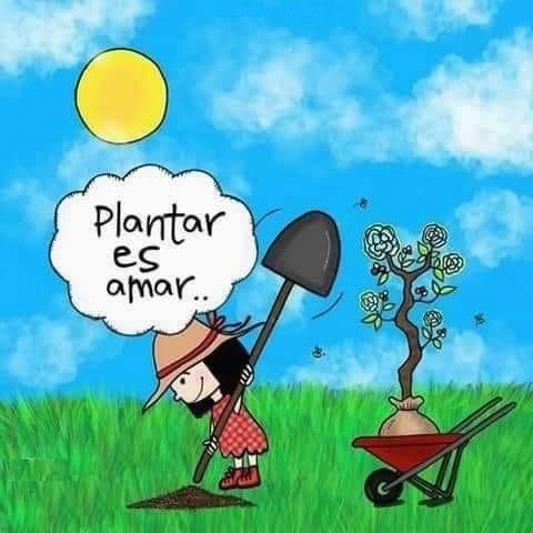 Plantar es amar...