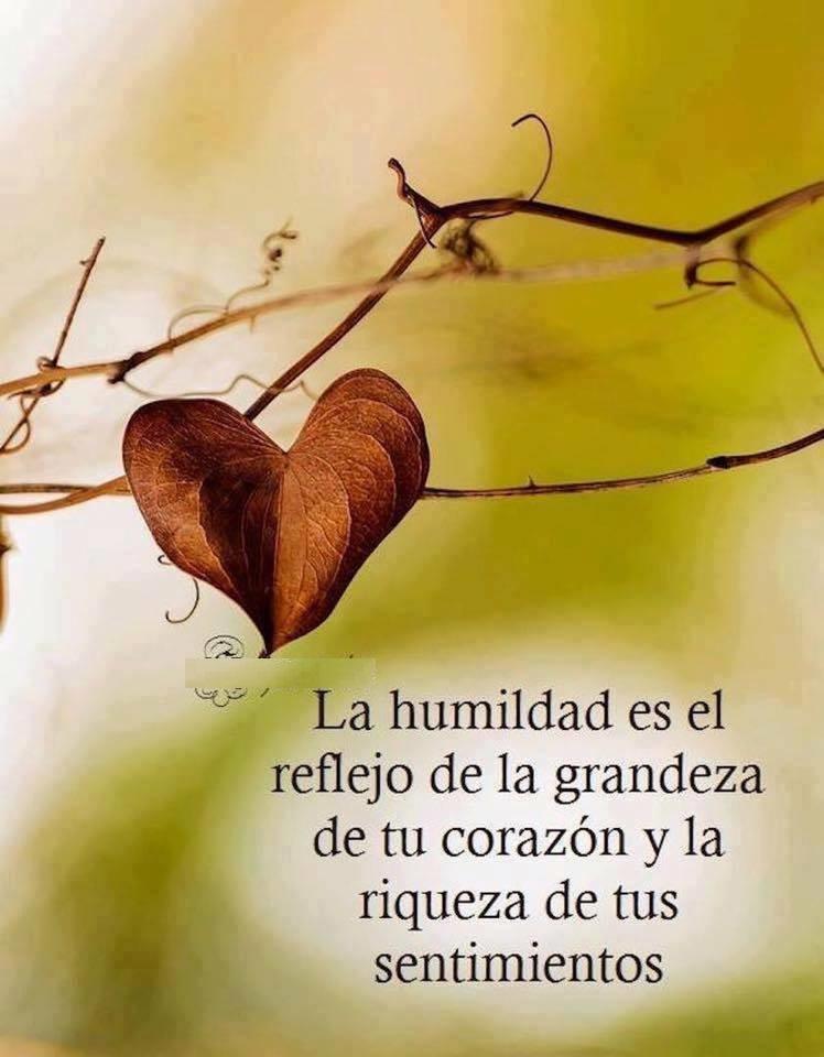 La humildad es el reflejo de la grandeza de tu corazón