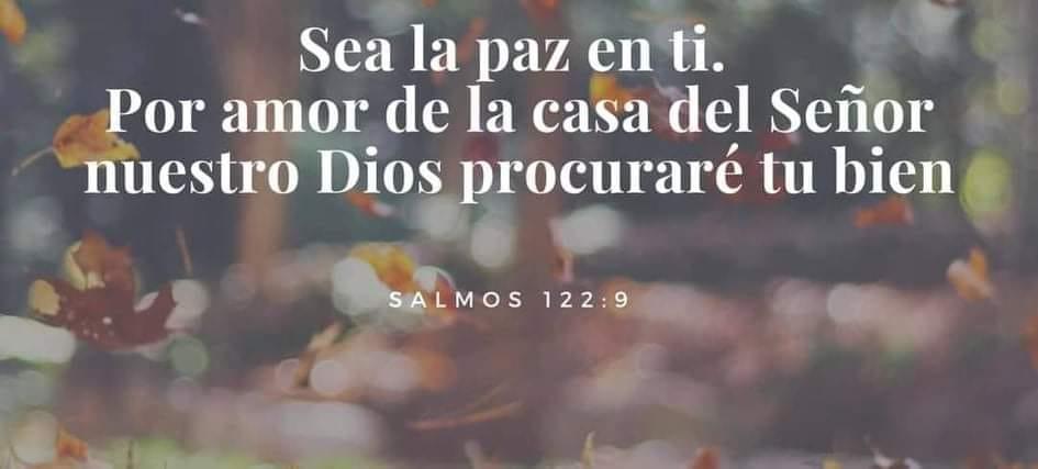 Salmos 122:9 Sea la paz en ti. Por amor de la casa del señor nuestro Dios