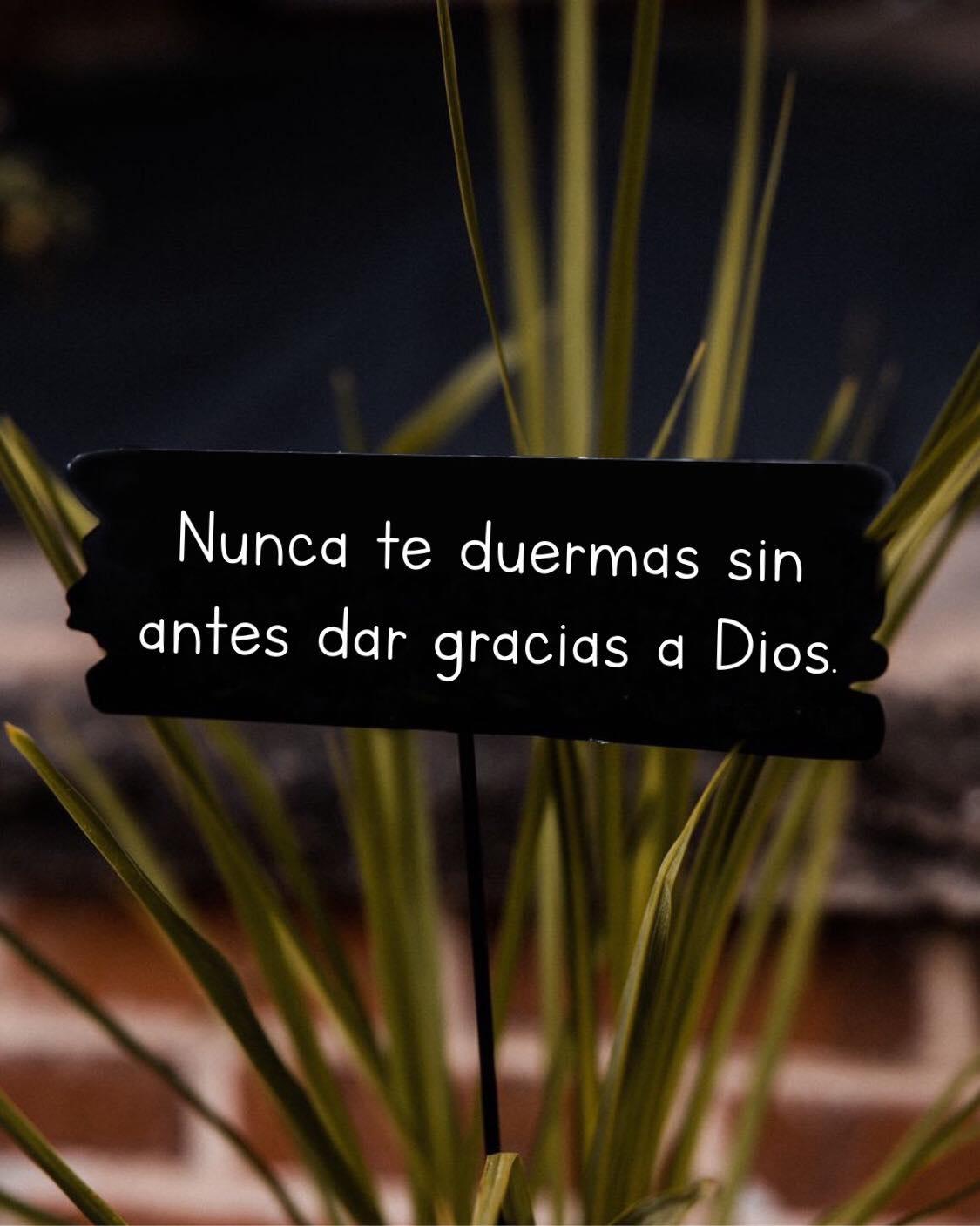 Nunca te duermas sin antes dar gracias a Dios